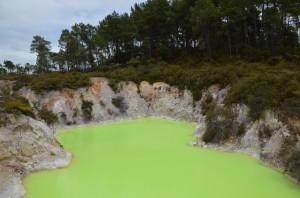 toxic-mini-lake